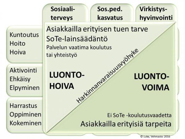 Hoiva_voima_19