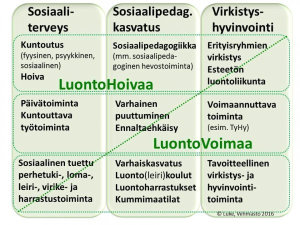 Hoiva_voima_2_19